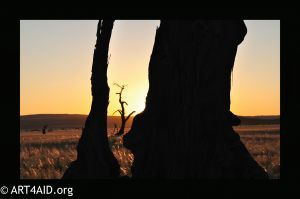 Field of Vision - Namibia -